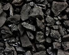 Coal (hard coal and brown coal)